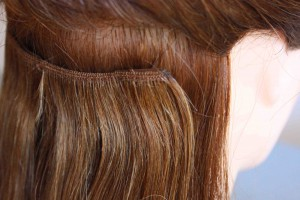 clipin wefts 004