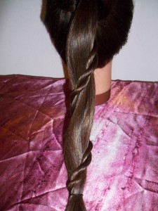 pony and skinny rope braid