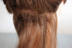 clipin wefts 002